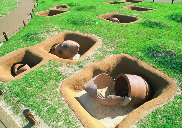 国営吉野ヶ里歴史公園 甕棺墓列