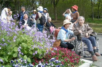 園内の花を見ながらの散策