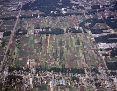空から見た三富新田
