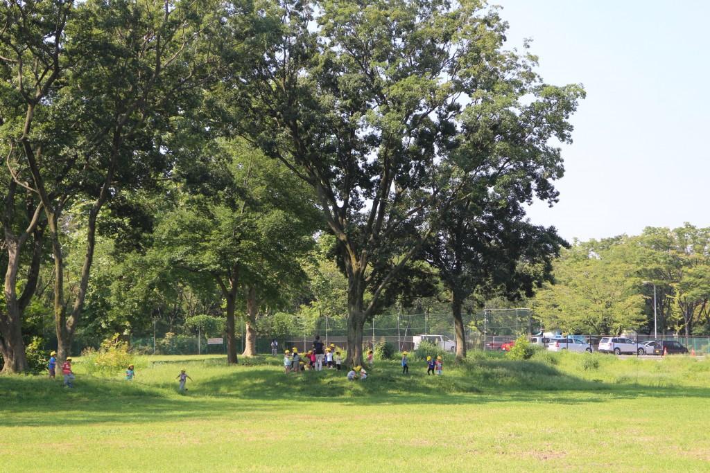 大きく育った木の下で遊ぶ近所の園児たち