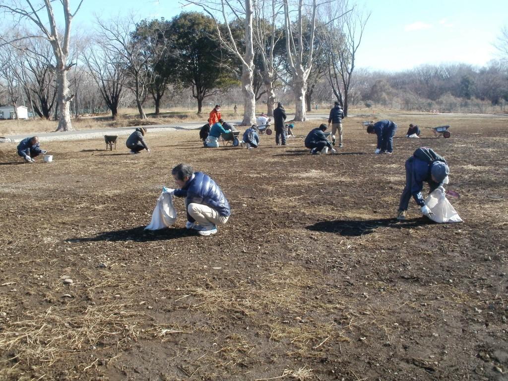 約100人の市民が集まって行われた<br>「石ころ拾い」のイベント