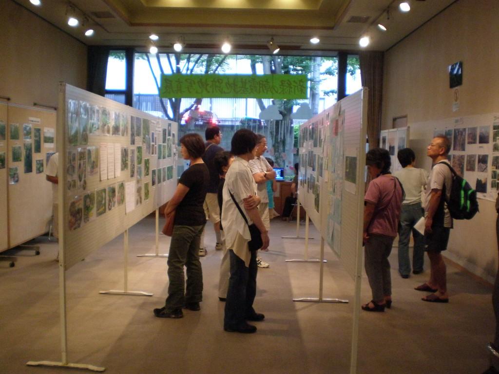 自然を守る会で展示した森の写真