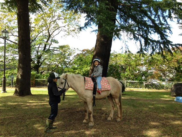 「西公園まつり」で馬にまたがる子供<br>『伊達政宗みたいでしょ!』