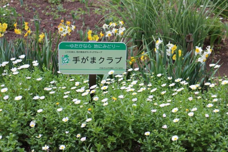 アダプト制度で活動している花壇に設置されたお知らせサイン