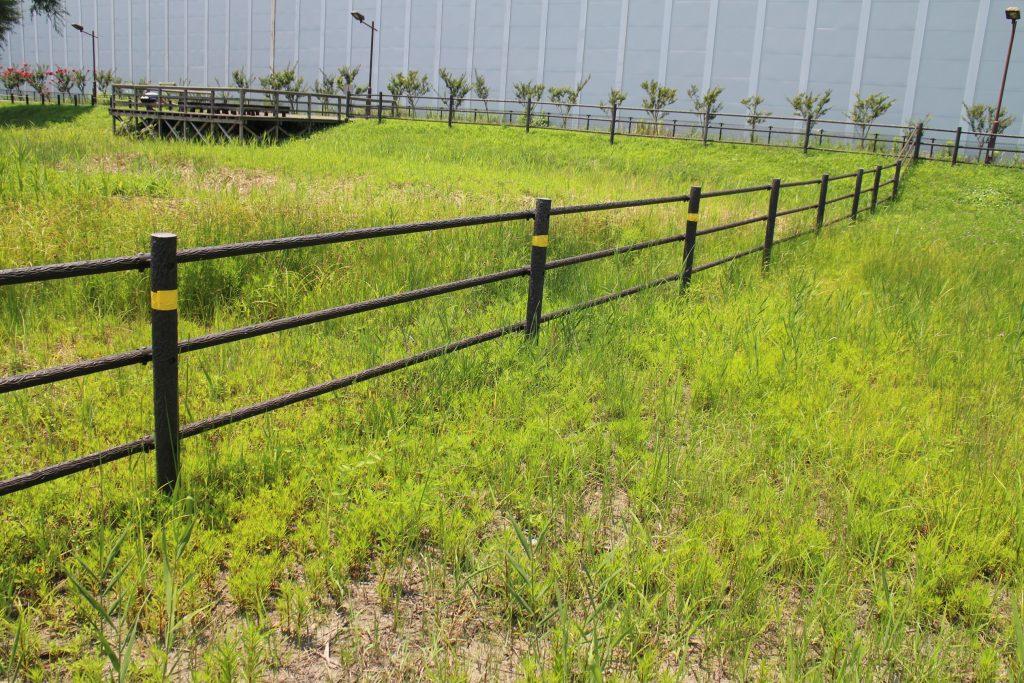 柵の黄色いテープは、希少な植物が確認された場所の目印