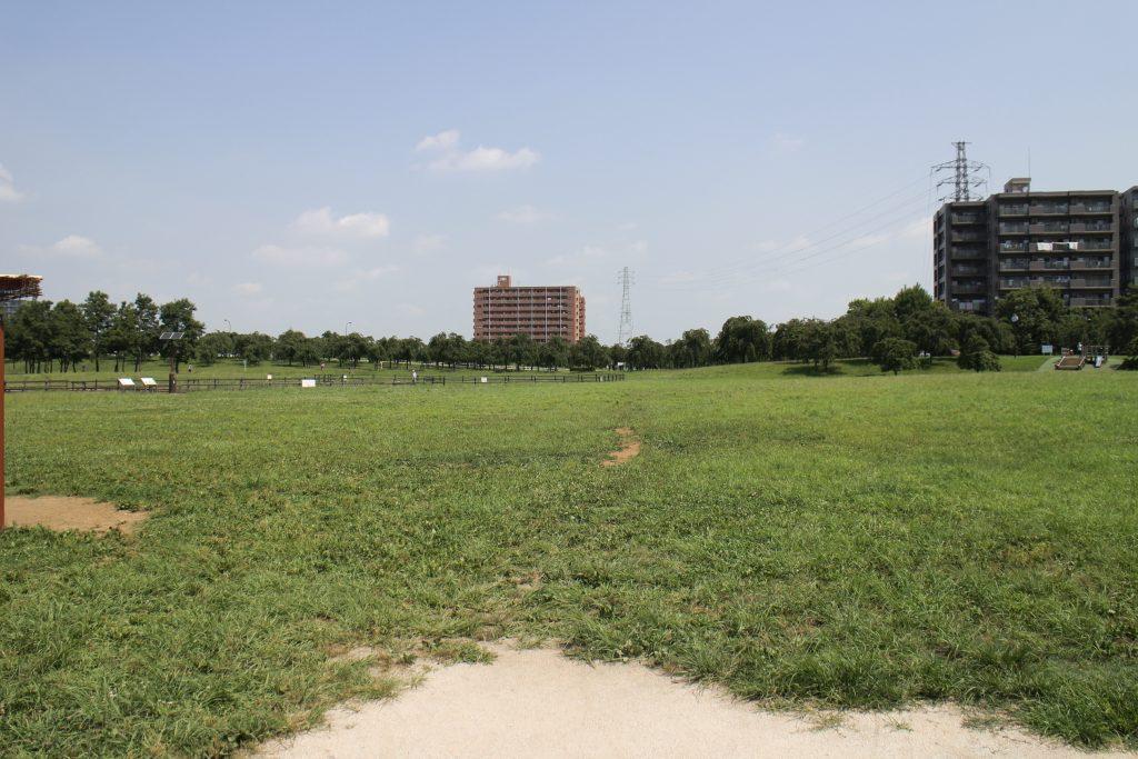 遊具などは設置せず、自然の原っぱを生かした尾久の原公園