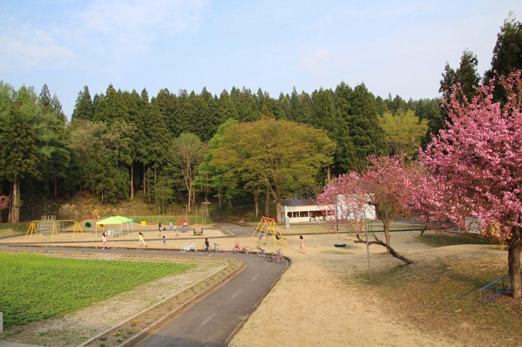 福原さんの仕事場から見える桂公園