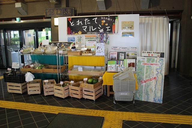 収穫した野菜を販売している「とれたてマルシェ」。平日のお客様増に繋がっている。