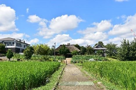 足立区のかつての「農」の風景を思い起こさせる園内。