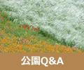"""公園""""Q&A /"""