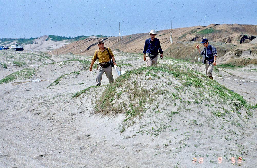 砂丘の自然生態調査