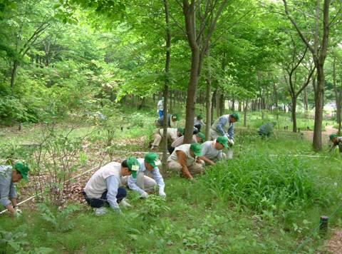 ボランティアによる公園市民力の発揮