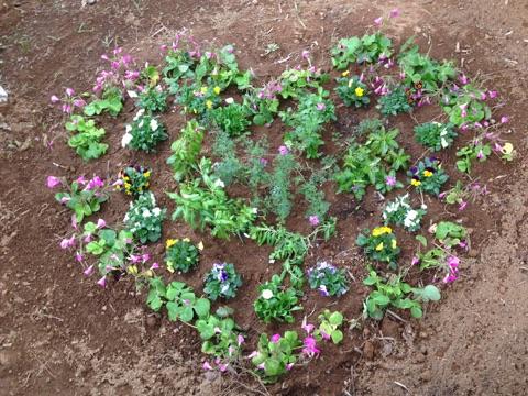 楽しみながら作業をして花壇も作っています