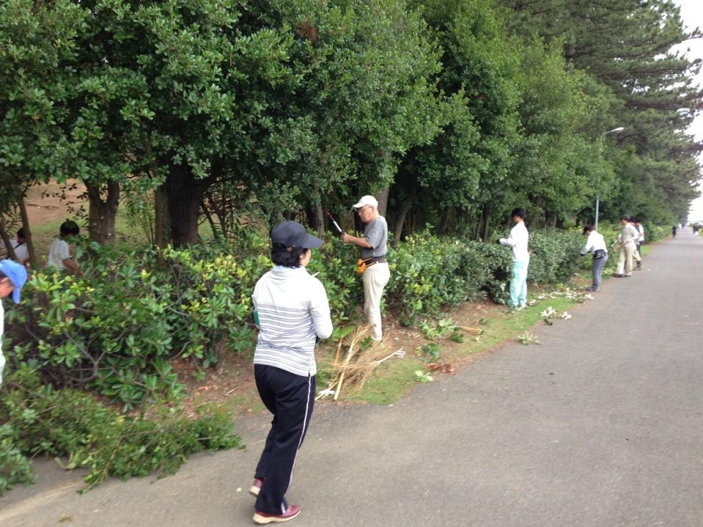 木々の剪定には、多くの人がボランティアで参加してくれます