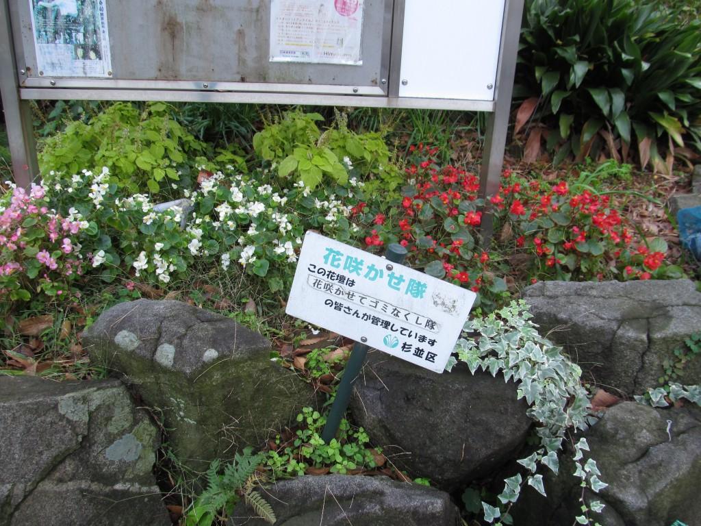 小松崎さんたちのグループが植えている花壇