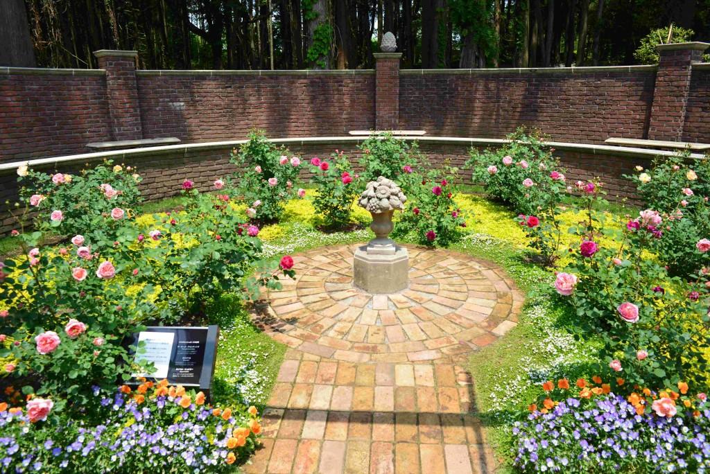 バラの時期の秘密の花苑