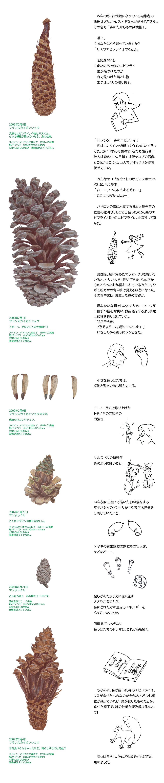 葉画家・群馬直美さんのアートコラム Second season 第6回イメージ1