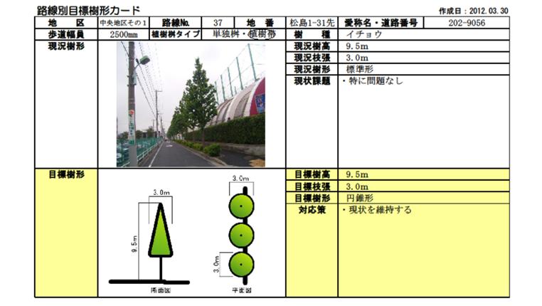 道路毎に作成した目標樹形カード例