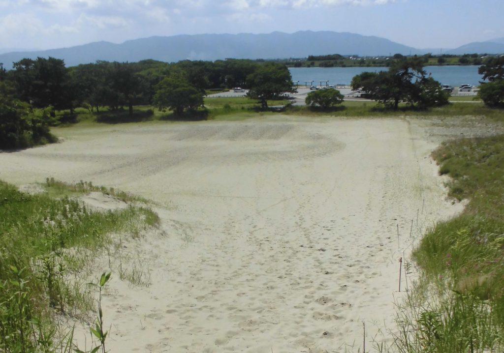 「祖父江砂丘」と親しまれてきた砂丘