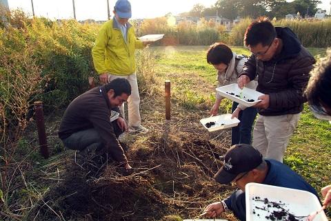 桑袋ビオトープ公園での堆肥の見学会