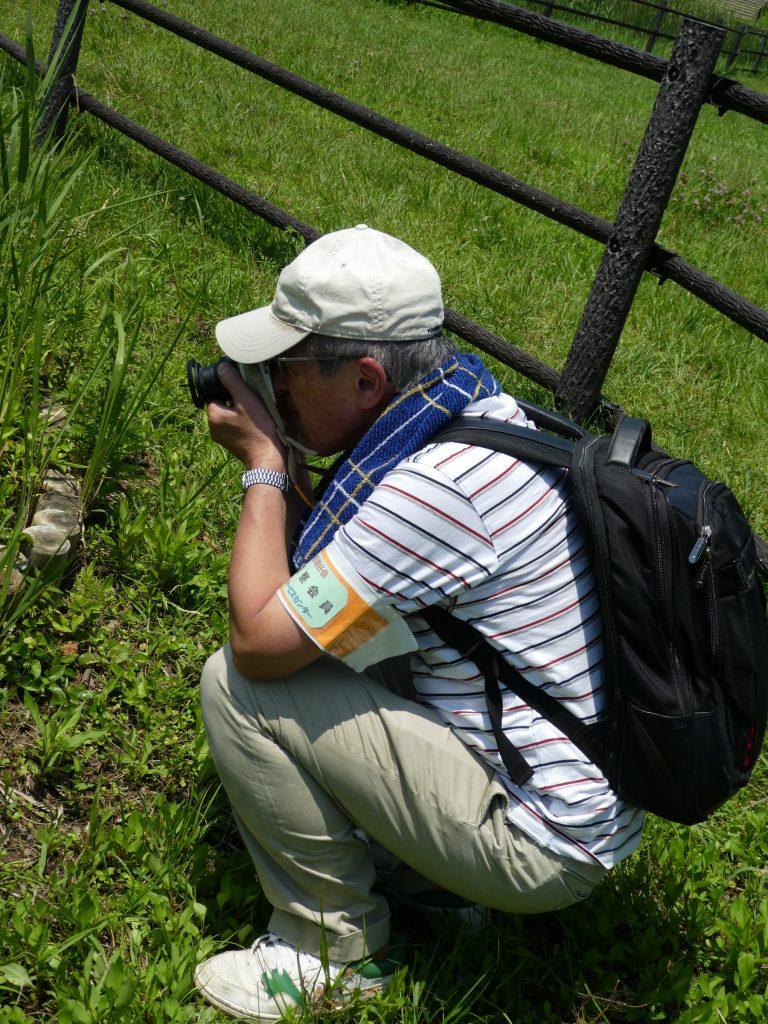 園内の湿地帯は立ち入り禁止のため、メンバーは必ず腕章を付けて活動する