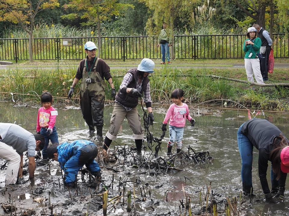 泥んこになる機会が減っているせいか、「泥んこハス掘り体験」は人気プログラムの一つです