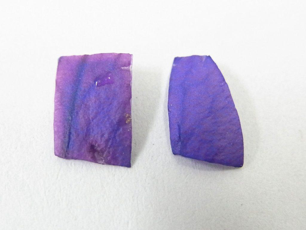 図2 左:ギ酸で赤変したキキョウ、右:無処理