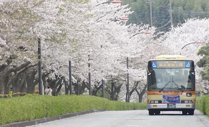 駅と公園を結ぶ臨時バスも出る