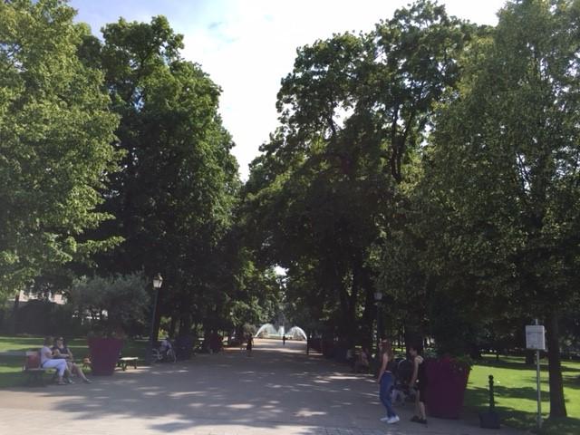 193本のセイヨウボダイジュの並木道のある庭園