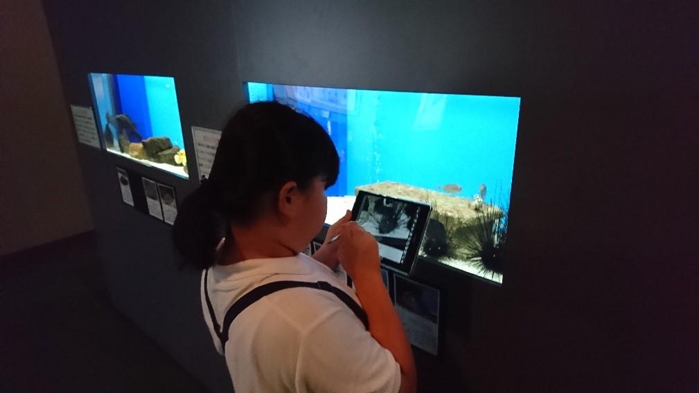 写真9 調べたいテーマで見学し発見や驚きをタブレットで撮影して記録する