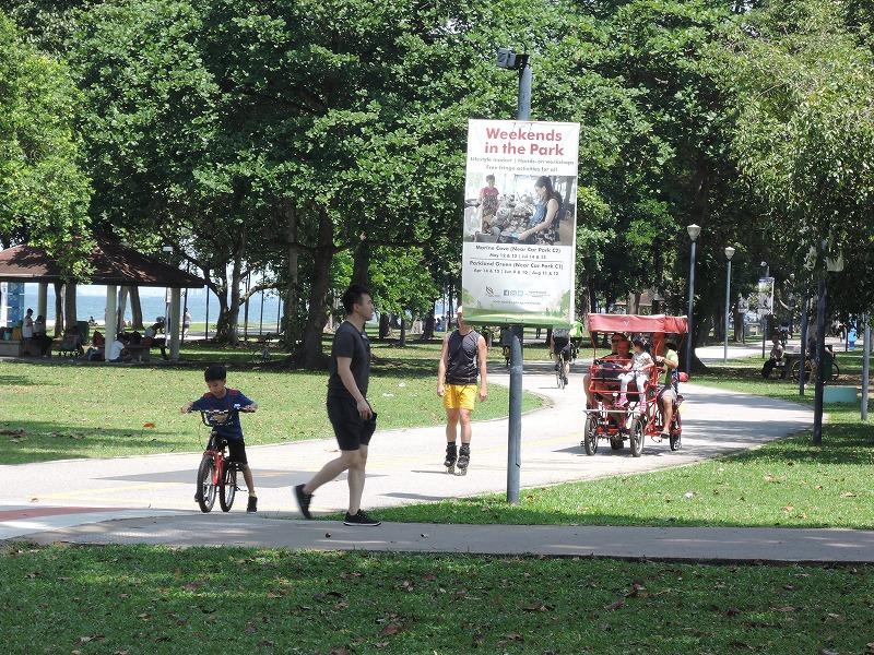 歩行者と乗り物に分かれた園路