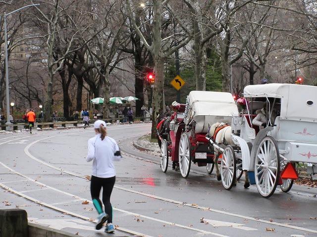 観光客の目をひく馬車。徒歩、ランナー、サイクリング、馬車・車用に分かれた園路は<br/>オルムステッドの提案が元になっている。