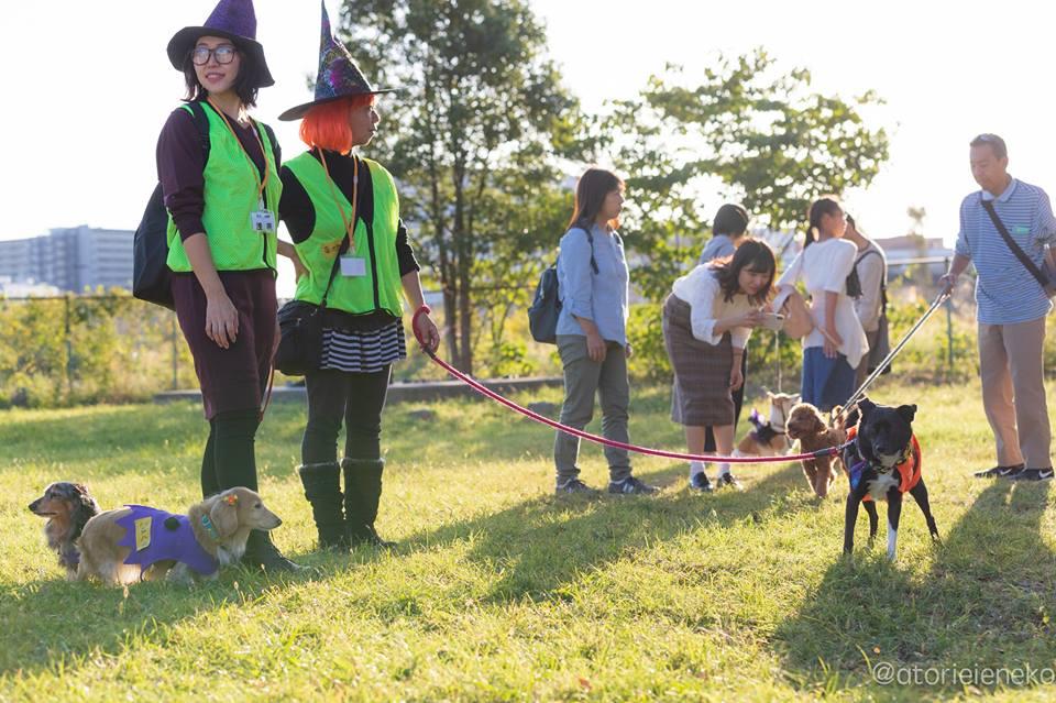 「わんこと一緒にクリーンアップキャンペーン」では園内を掃除したり、マナー講座等を開催している(ペットグループ)。