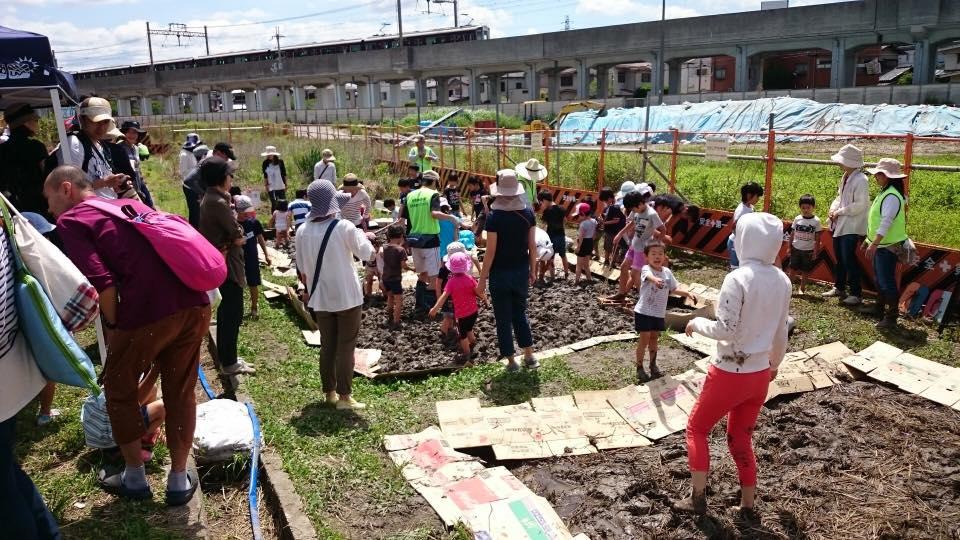 <古代米グループ>と<あまプレーパークの会>共催で実施した「泥んこ遊び」は、「田起し」や「田均し」を兼ねている。