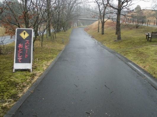 写真2 下り坂であるためスピードが出やすいサイクリングコース。