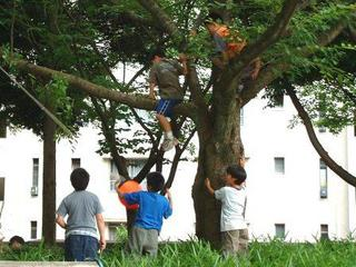 昔の子供たちがしていたようにのびのびと遊ぶ子供たち。