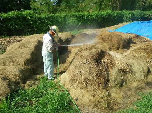 ヘドロ化を防ぐ微生物資材は納豆など身近にある食品から簡単に作成することができる。
