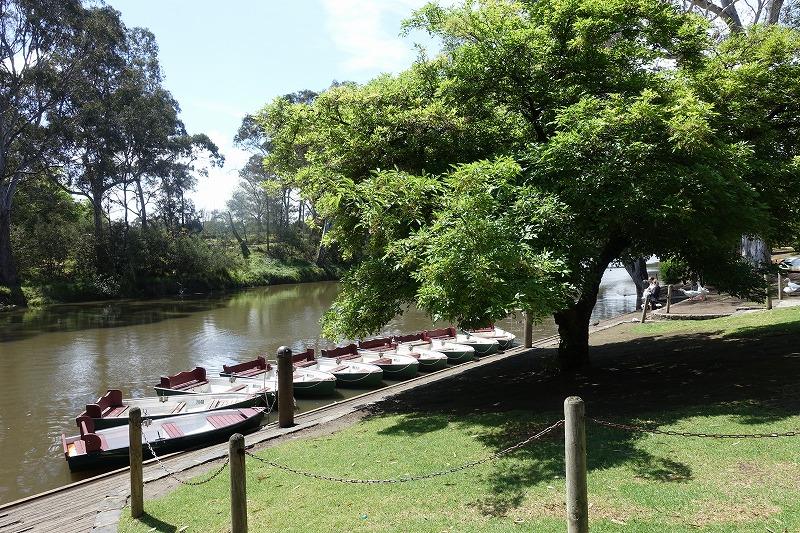 保全区域以外の場所にはボートや売店もある。