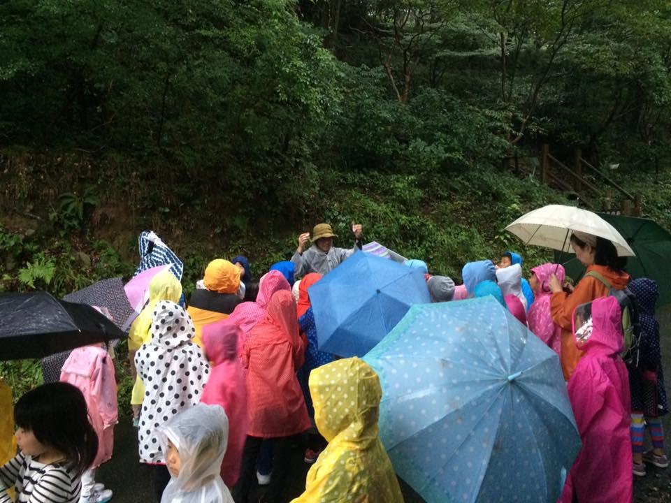 雨でも自然観察に来る参加者