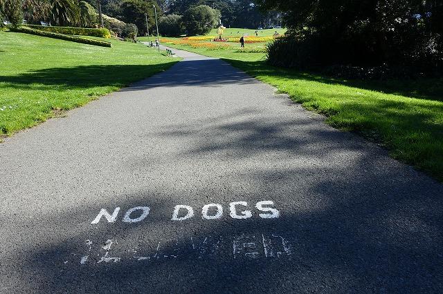 広々とした園内だが犬を規制する標示も…