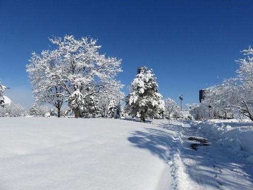 毎年12月半ばを過ぎると雪が積もる