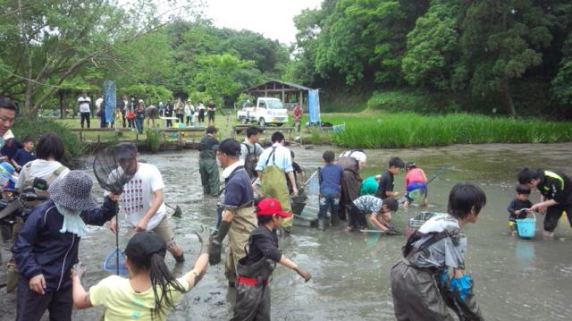 水質の改善や調査等を目的に行う池干し
