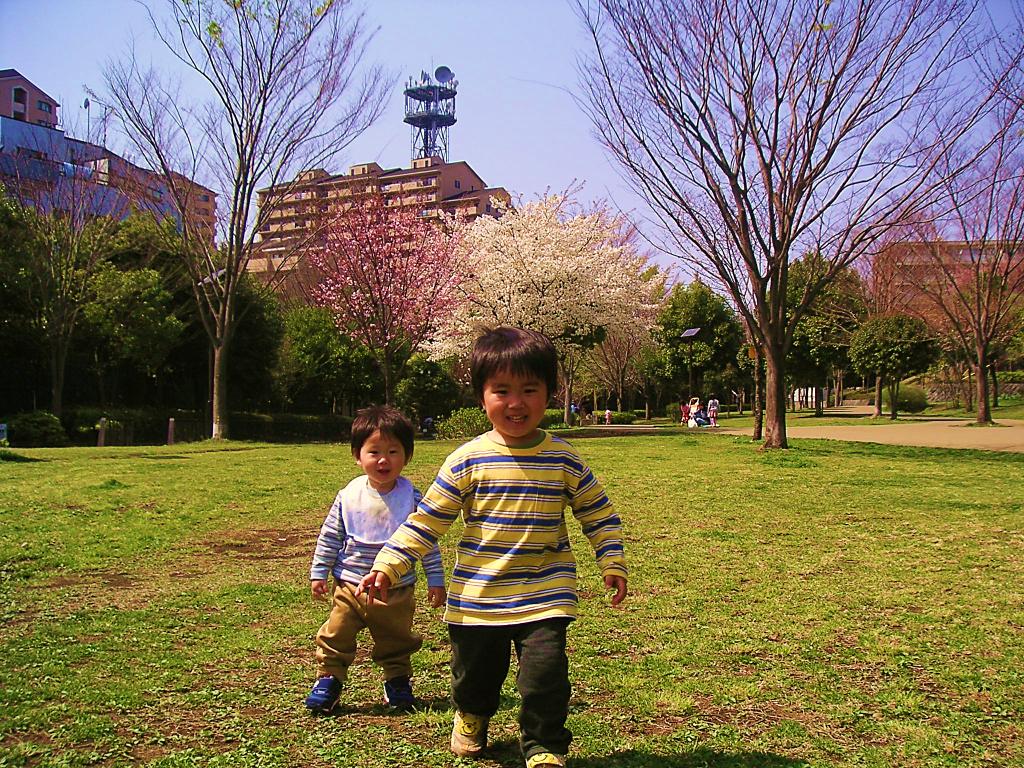 写真2 小さい子どもも安心して緑道をお散歩(16年前の港北ニ ュータウン)