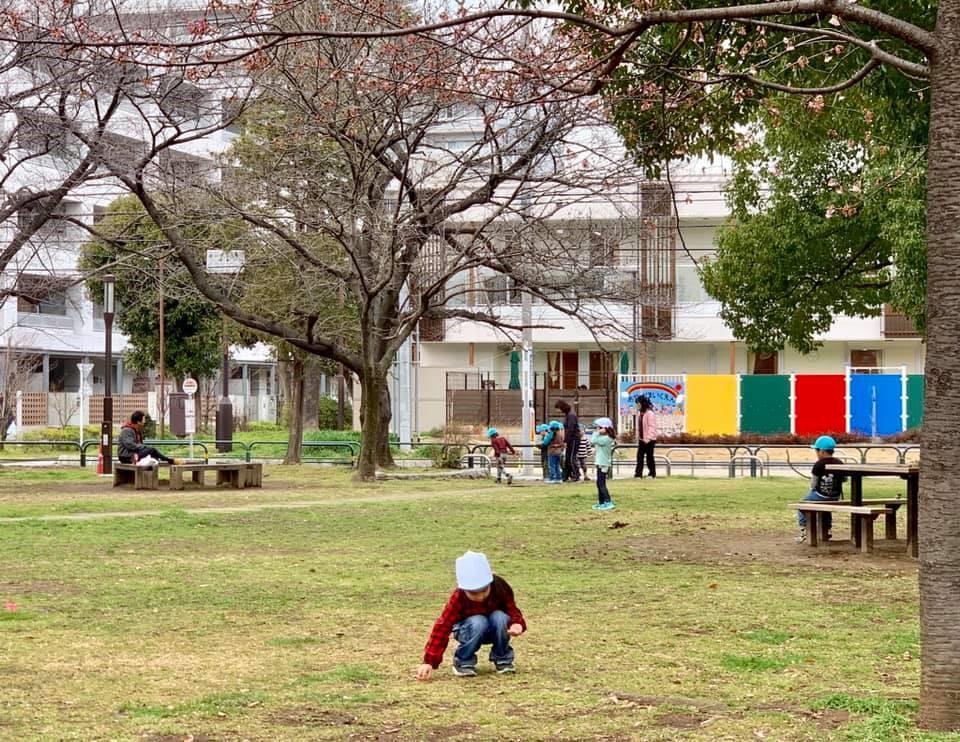 写真3 毎日、公園が広い園庭に(東綾瀬公園)