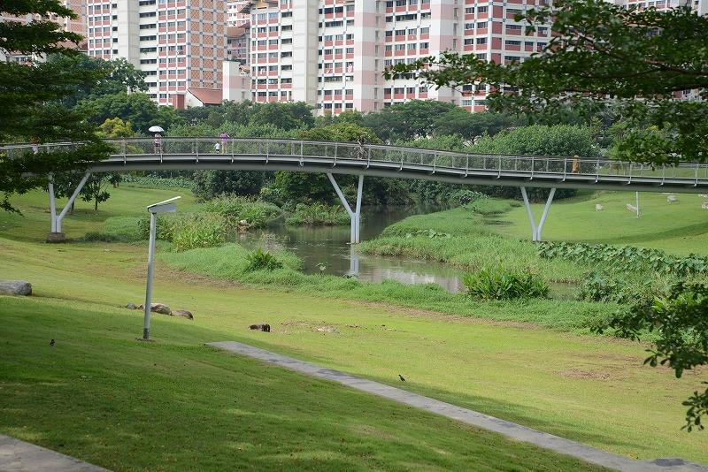 川の上を通るのは歩行者と自転車が通れる専用道パークコネクター