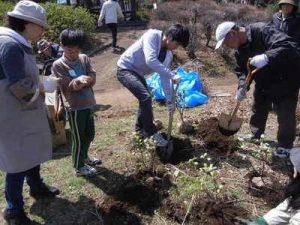 2014年3月に実施したワークショップでは、地元の造園会社の協力で植樹した