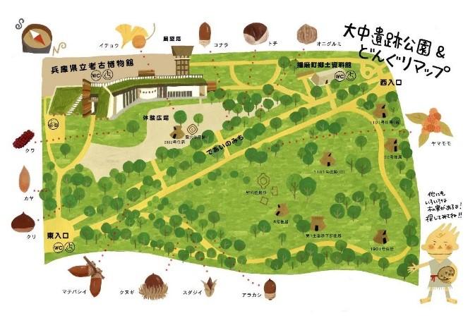 植栽されているドングリを紹介するマップは、<br/>イラストレーターの井上リエ氏の協力を得て作製した