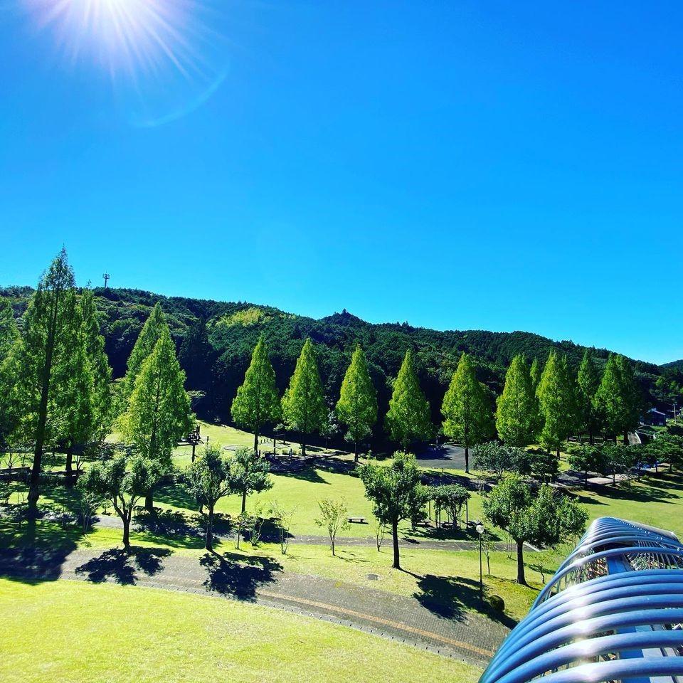 豊かな自然が後背に広がる緑林公園