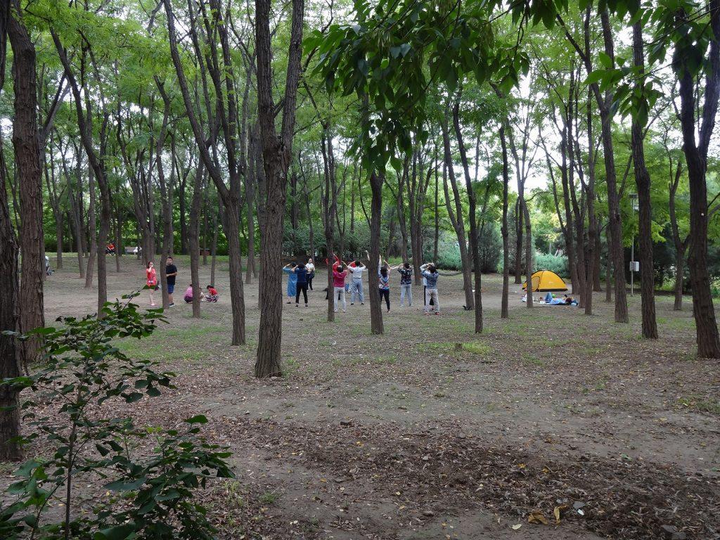 太極拳などを実施しており、一見すると普通の公園と変わりない