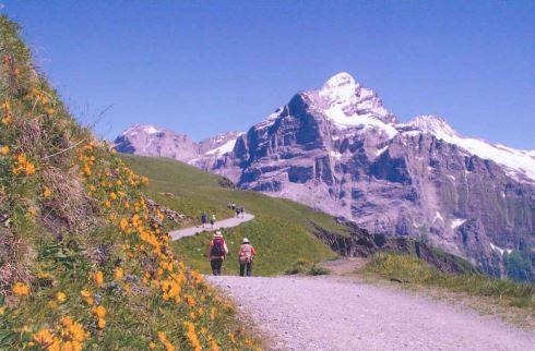 ハイジが住んでいたようなスイスの山並み